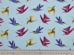 Jersey Kolibris Little Darling, hellblau