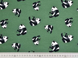 Jersey Pandabären, grün