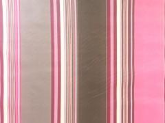 beschichtete BW Leona Streifen - pink/taupe
