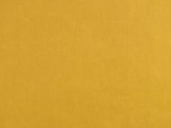 Dry Oilskin Light Stoff gewachste Baumwolle, curry cumin