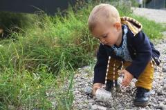Jersey Waldtiere Laub Pilze, ocker hellblau