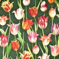 Outdoorstoff Dralon® Teflon Tulpen, rot gelb dunkelgrün