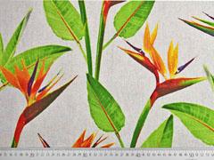 Leinenlook Bird of Paradise exotische Blume