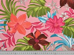 Jersey Lilien, rosa
