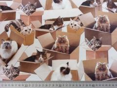RESTSTÜCK 71 CM Jersey Digitaldruck Cats and Boxes