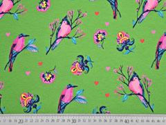 French Terry Sweat Vögel Herzen, rosa grün