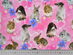 Jersey Hasen Kaninchen Digitaldruck, rosa
