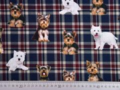 Jerseystoff Digitaldruck Schottenkaro mit Hunden