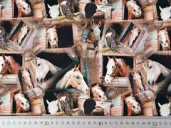 Jersey Pferde Digitaldruck, braun