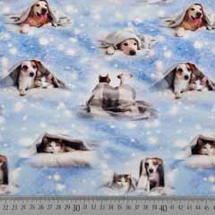 Jerseystoff Hunde Katzen Best Friends Digitaldruck, eisblau