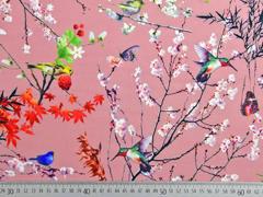 Softshell Stoff Kirschblüten Vögel altrosa