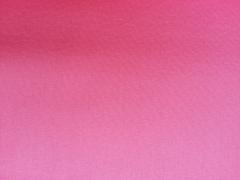 Canvas - pink