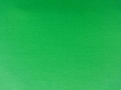 Jersey leuchtendes Grün