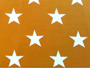 Jersey Sterne 4,5 cm Vicente curry gelb