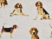Leinenlook Beagle Hunde, natur