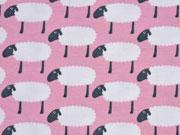 Stenzo Jersey Schafe,  rosa
