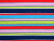 Jersey Streifen (Kombistoff Äpfel), bunt/grau