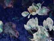 elastischer Samt Blumen, dunkelblau