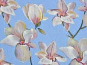 Blusenstoff Digitaldruck Magnolien, hellblau