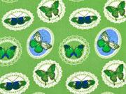BW Ornamente & Schmetterlinge, hellgrün