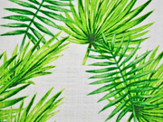 Baumwolle Viskose Palmblätter, grün weiß
