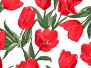 Baumwollsatin Tulpen, rot weiß