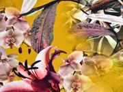 Jersey Blumen Lilien Hibiskus Digitaldruck , ocker