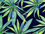 Viskose grüne Palmblätter, hellgrün dunkelblau