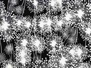 Viskosejersey Pusteblumen Dandelions, weiß schwarz