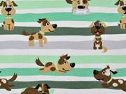 Jersey Hunde Streifen, grün weiß