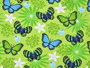 Jersey Schmetterlinge, türkis hellgrün