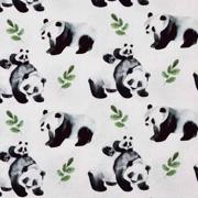 Jerseystoff Panda Bären Sträucher Digitaldruck, schwarz grün weiß