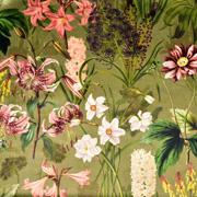 Dekosamt Velourstoff tropische Blumen, altrosa khakigrün