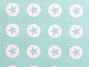 BW Sterne im Kreis 1,8 cm - weiss auf hellmint