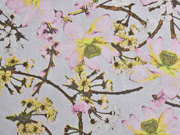 Wildlederimitat Kirschblüten, altrosa hellgrau
