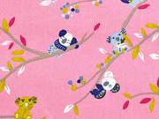 Baumwolle Koalas Äste , rosa