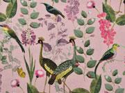 Canvas Stoff tropische Vögel Blumen Gräser, altrosa