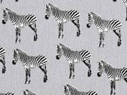 Baumwolle Zebras, grau