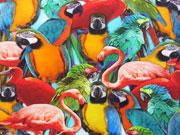 Jersey Digitaldruck Flamingos & Papagaien - bunt