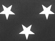 BW Sterne 5cm - weiß auf schwarz