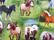 RESTSTÜCK 79 cm Jersey Ponys  Digitaldruck, braun grün