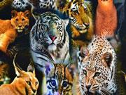 RESTSTÜCK 39 cm Jersey Digitaldruck Löwen & Tiger
