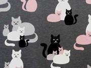 RESTSTÜCK 61 cm Jersey Katzen Treffen - dunkelgrau