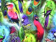 Reststück 81cm Jersey Digitaldruck Papagaien, pink/bunt