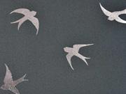 Softshell Schwalben, metallic silber auf dunkelgrau