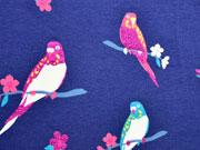 Jersey Kanarienvögel Glitzer, pink mittelblau