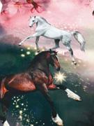 Jersey Pferde Panel 2 in 1, rosa