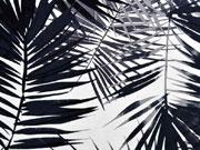 Viskosejersey große Palmblätter, schwarz weiß