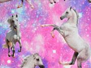 Jersey Digitaldruck Sternenhimmel Pferde, rosa