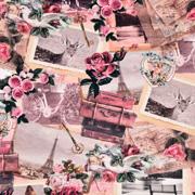 Jerseystoff Rosen Koffer Oldtimer Just Married Digitaldruck,altrosa rosa
